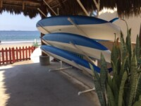La Manzanilla paddle board rentals and tours.jpg